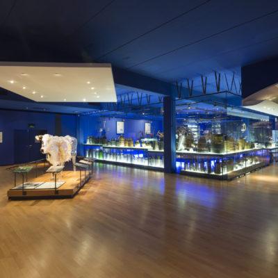 Музей «Лактополь»