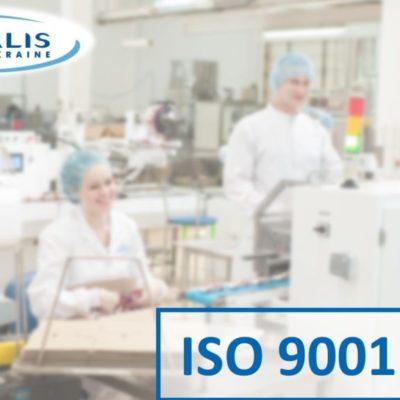 Яка головна мета стандартів ISO?